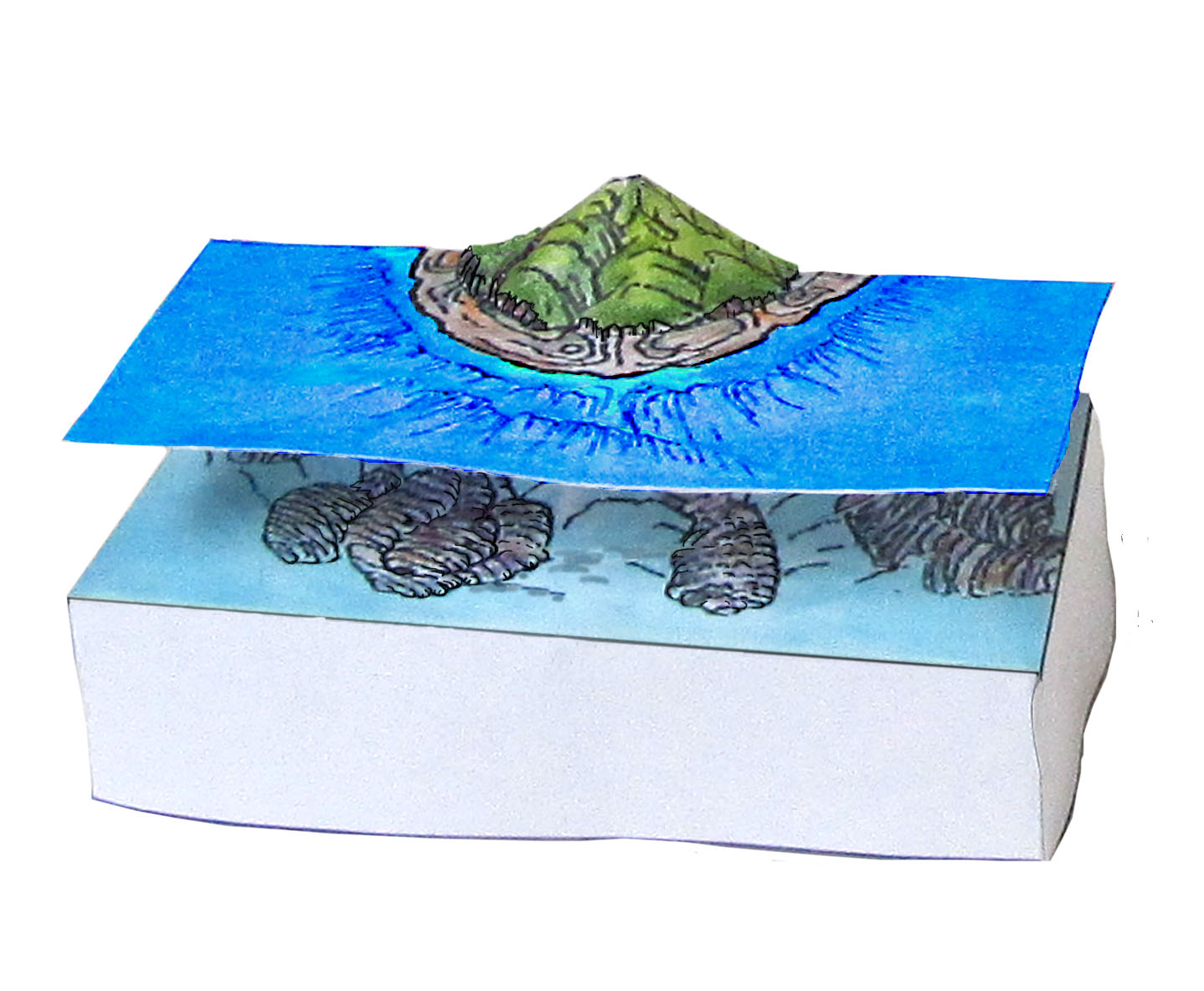 picture of volcano with coral model